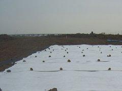 土工布填海铺设